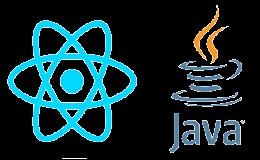 Full Stack Java&React Developer